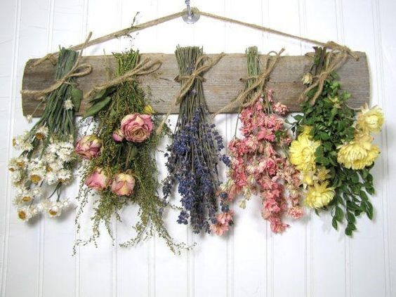 hung flowers and herbs