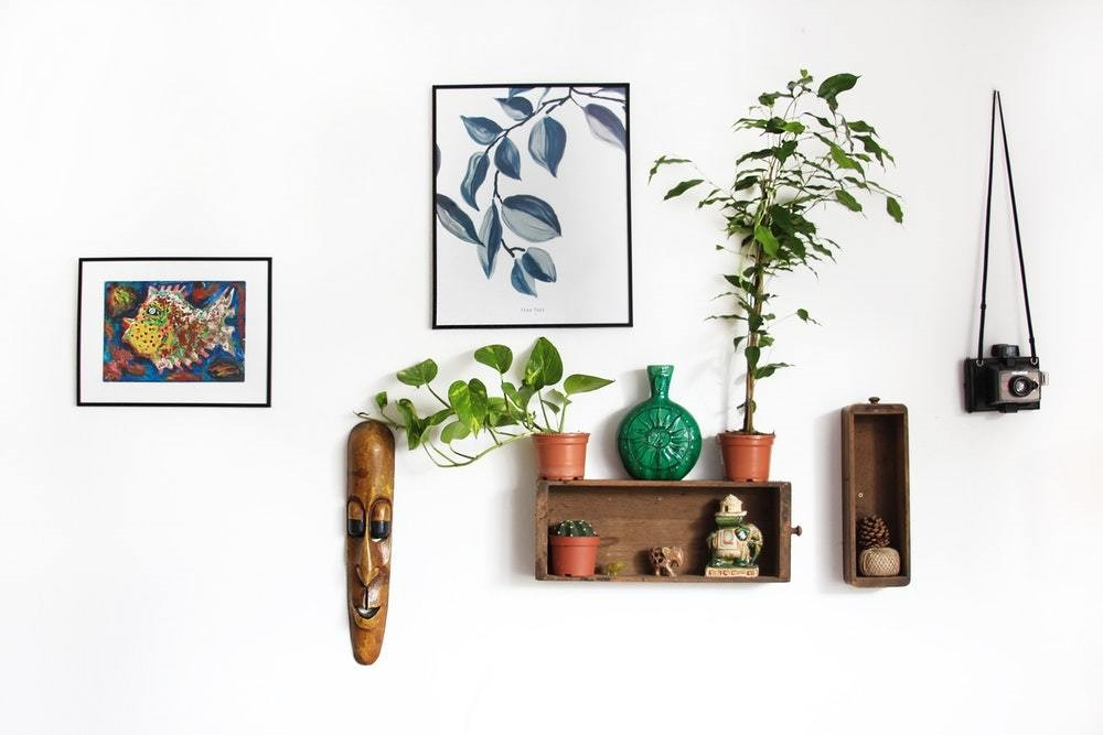 plants and boxes and wall hangings and home decor
