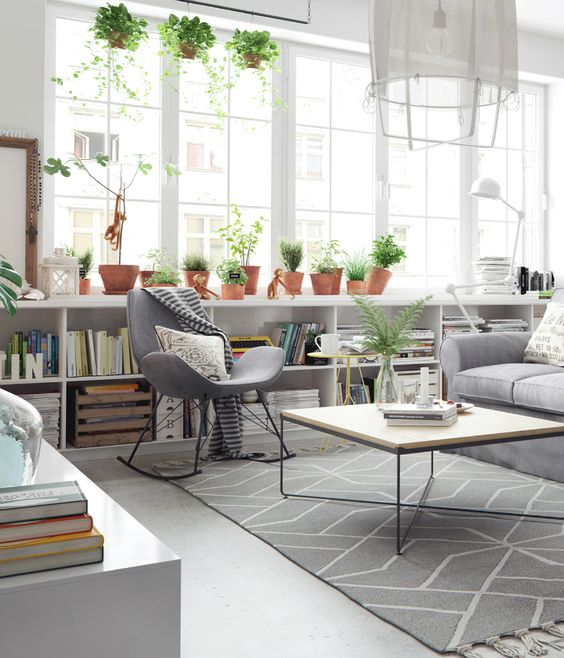 Living room with plants and chairs