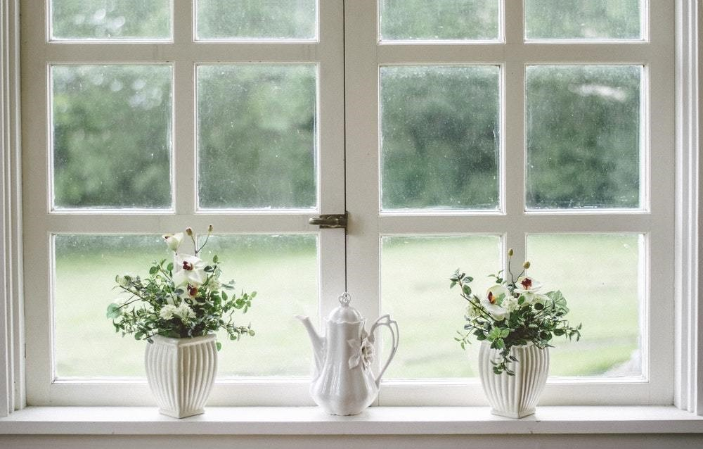white window with two potted plants and a tea decanter on the window seal